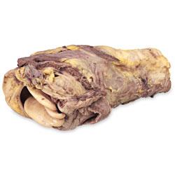 ENASCO science grade preserved pig trachea